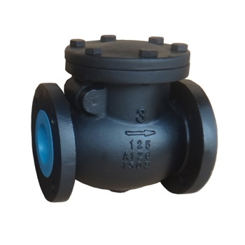 Swing check valve-cast iron, ductile iron